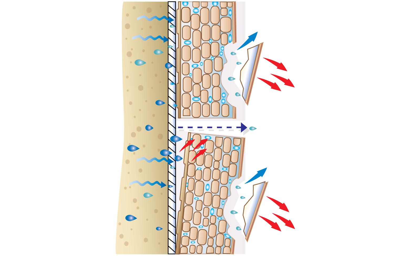 Зображення структури і поведінки води в пресованій плитці